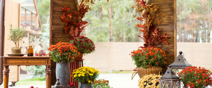 Fall Decor Ideas with Colony Park