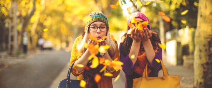 Our Guide to Fall Activities for Kids this Season at Colony Park
